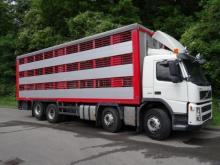 Tiertransporter Ankauf für den Export